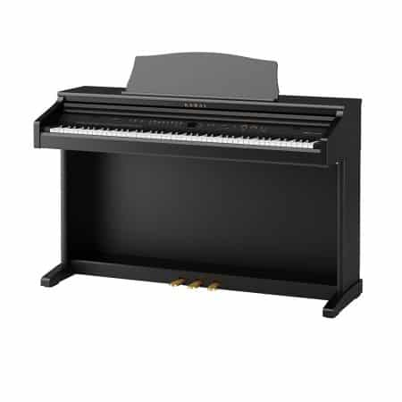 CE220 Digital Piano Houston