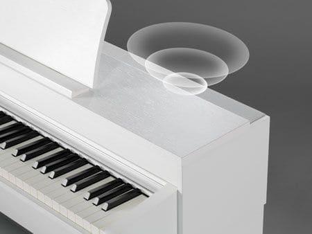 CN Series Digital Piano Speakers